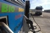 Les biocarburants reçoivent une volée de bois vert