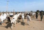 Violences au Soudan, le calme revient