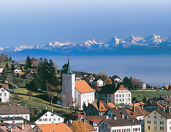 Avocat Lausanne ?