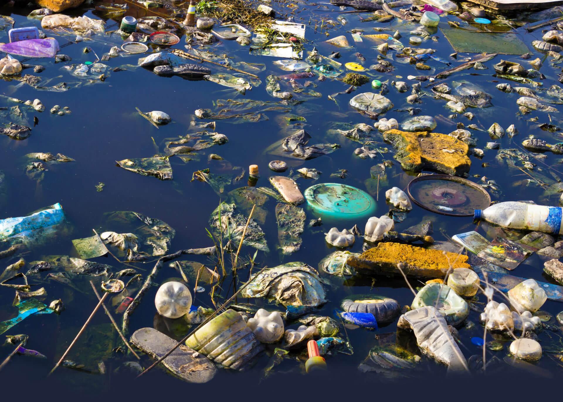 Biodiversité, un rapport consensuel de l'ONU sonne l'alarme