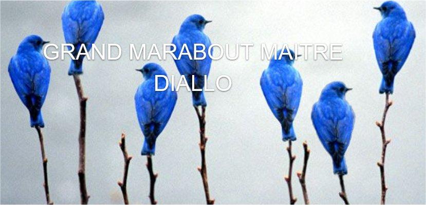 Mr Diallo marabout guérisseur sérieux, compétent et voyant africain Roanne