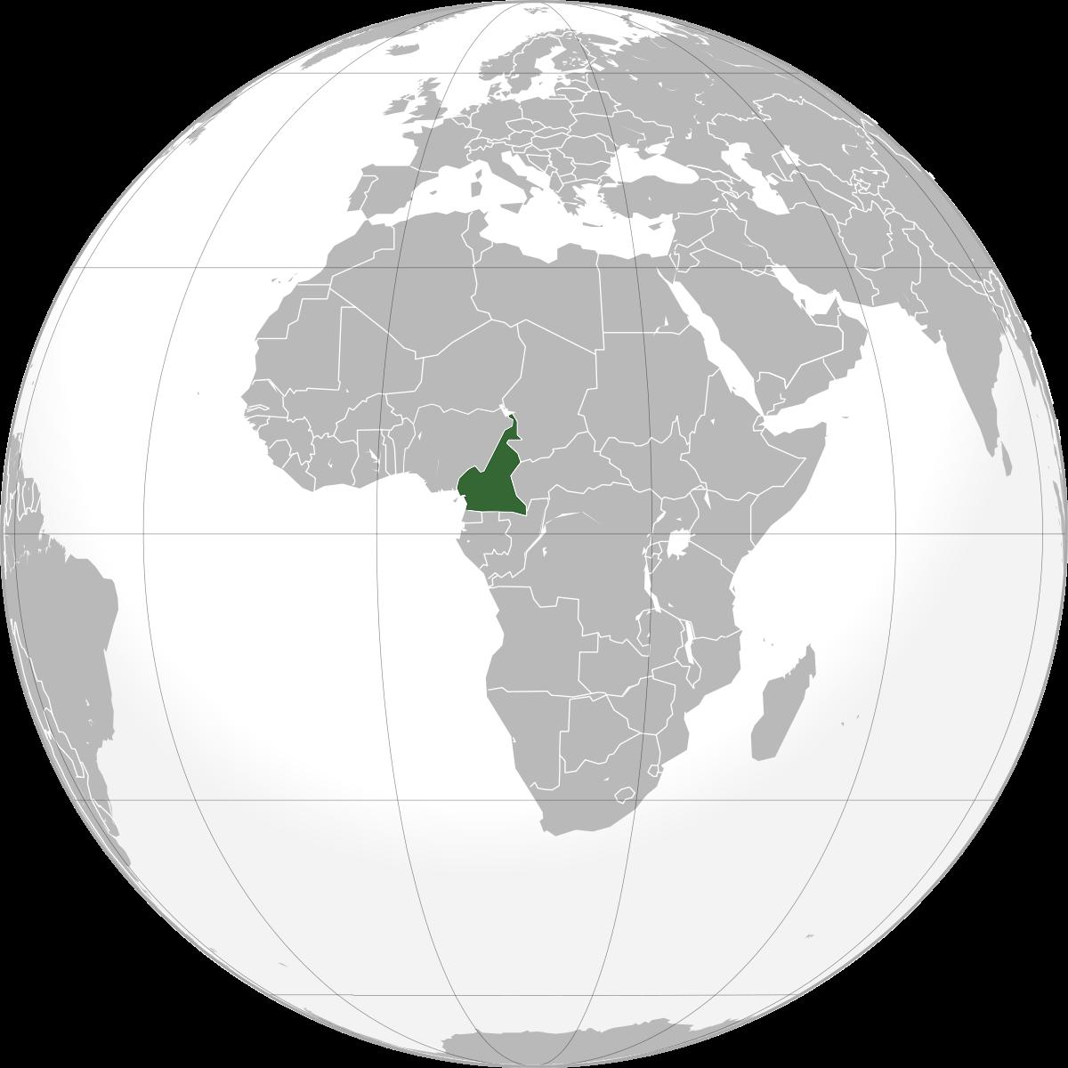 Cameroun : la France opte pour la libération des personnes arrêtées le 22 septembre