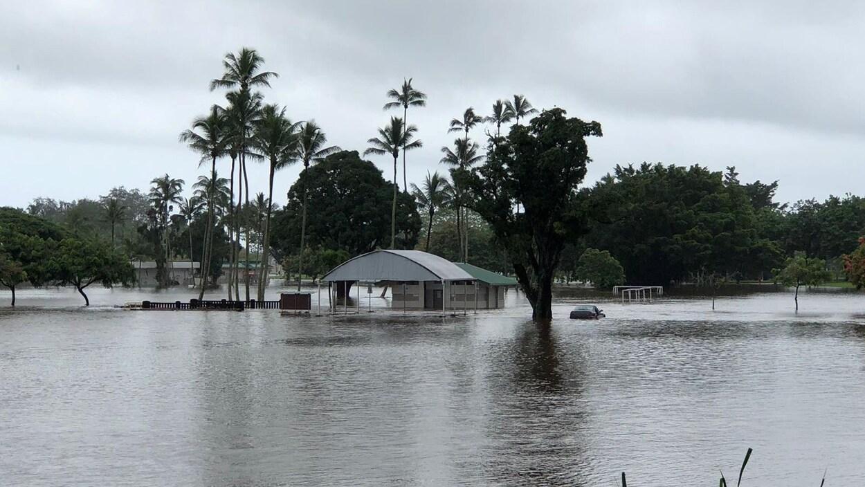 Revue de presse Hawaï