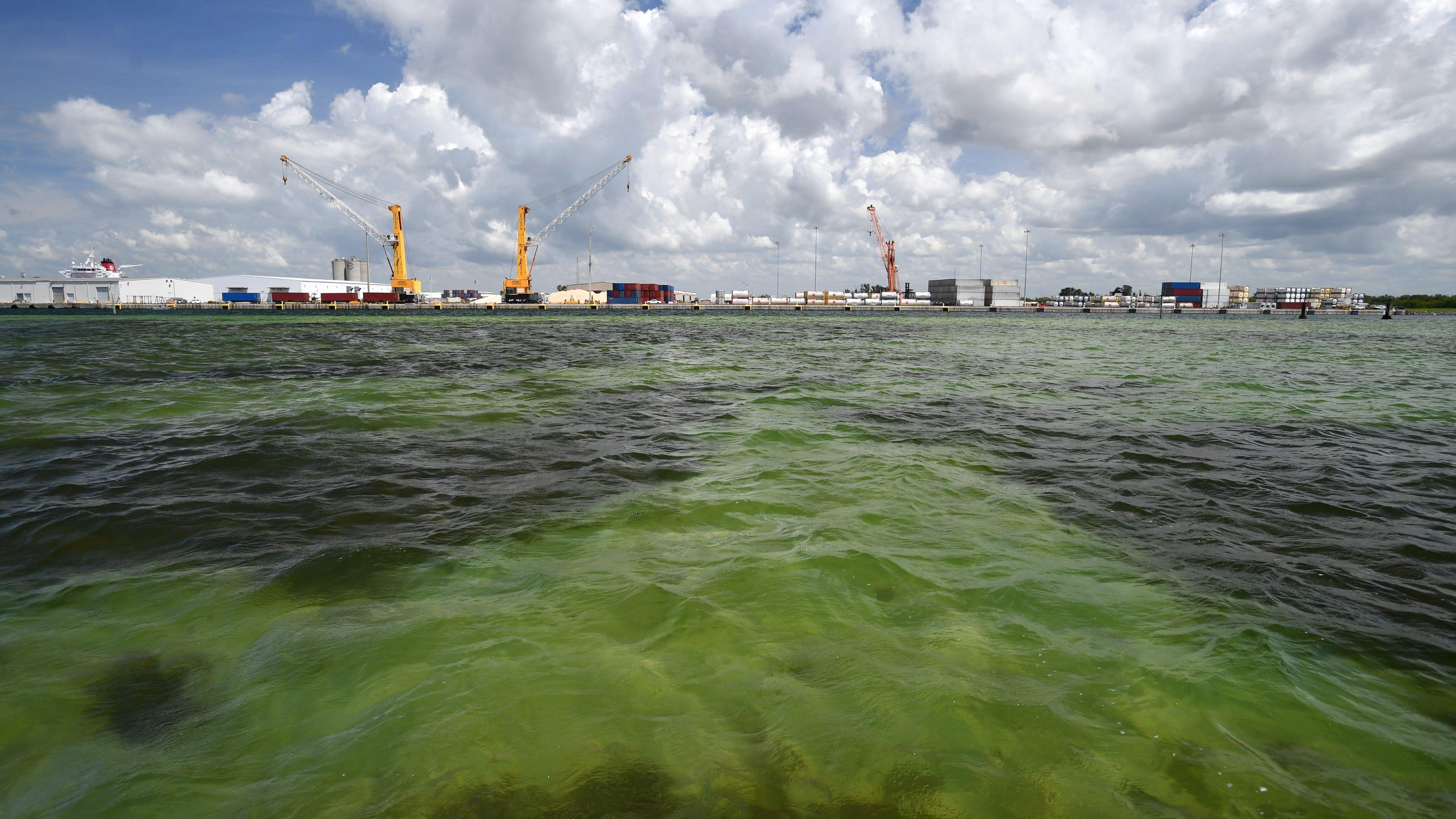 """La Floride invitée à """"évacuer maintenant"""""""
