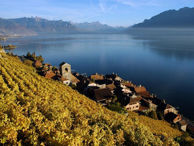Du bel immobilier sur le canton de vaud en suisse for Mobilier lausanne