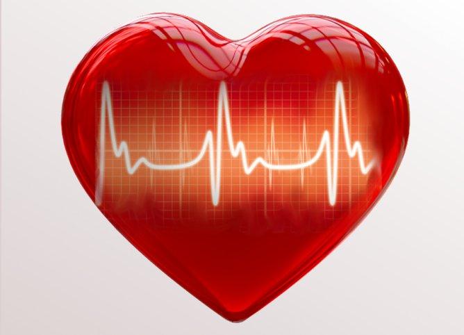 Santé: ces cœurs qui ressuscitent