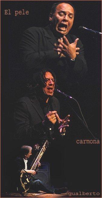 Seville: Sitar indien et flamenco
