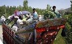 Monde: menace de catastrophe humanitaire au Pakistan