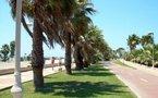 España Editoweb 4 Noviembre 2009