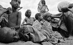 Monde: sommet de la FAO et autres news