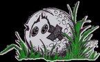 Marée noire:  balles de golf et poils d'animaux