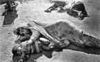 Inde catastrophe de Bhopal: huit personnes condamnées