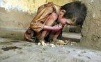 Famine pour sept millions d'Afghans et autres actus monde