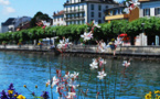 Genève: Consulter un Avocat