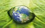 Toute l'actu de l'environnement