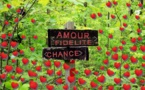 Sanba voyant marabout medium Angoulême 16 Charente Aquitaine 06 80 10 44 50