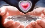Dinkounda 0485 37 21 93 marabout du retour affectif réussi et voyant guérison purification Molenbeek