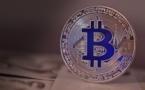 Monnaie numérique: qui sont vraiment les cryptomaniaques?