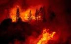 La Californie brûle un État en feu
