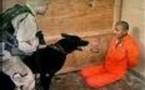 Guantanamo (Cuba): Un suicide relance le débat