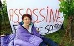 Législatives 2007:La cousine de Ségolène Royal (FN) dans les vignes