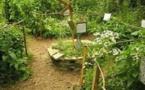 La Permaculture ou le respect de la nature (Part 1)