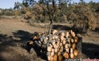 Rognac : Bois de chauffage en BDR et Provence