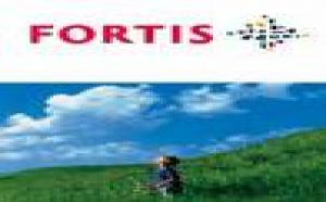 Lourde perte de changes pour Fortis