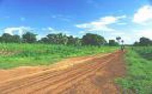 Togo et société civile