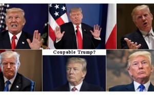 """Trump, """"shithole"""" et les traducteurs instantanés en ligne"""