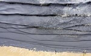 Marée noire: une île touchée au large de la Louisiane