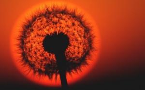 Europe: éclipse partielle de soleil visible ce mardi matin et autres actus