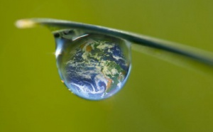Environnement: Les JT s'en désintéressent et autres actus