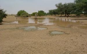 Sciences: Les pluies au Sahel étudiées par satellite et autres infos