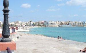 Malta news: Paceville murder