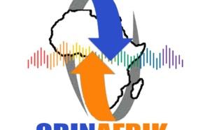 Covid 19; Situation sanitaire en Afrique ( Revue de presse )