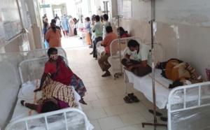 Une nouvelle maladie contamine plus de 500 personnes dans le sud de l'Inde.