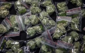 Chiayi a fait grimper le prix du marché de la plus grande usine de cannabis de Taiwan à plus de 500 millions