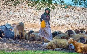 Un adolescent palestinien porte la cicatrice de la bataille pour l'expulsion de Jérusalem