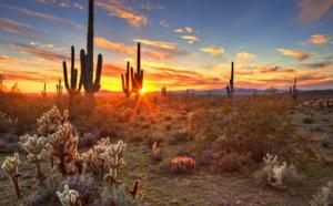 Canicule: 43 corps de migrants retrouvés à la frontière de l'Arizona