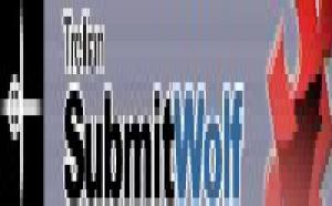 Référencement: le logiciel Submitwolf est leader