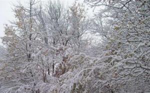 La neige bloque la circulation sur les routes des vacances
