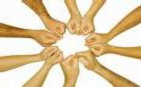La loi DADVSI au Conseil Constitutionnel