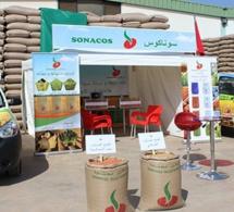 SENEGAL–ECONOMIE :Un syndicaliste préconise un plan de relance de la SONACOS-SA